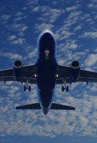 В аэропорту Нью-Йорка после столкновения с птицей вынужденно сел самолет