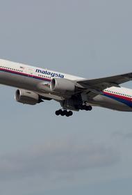 В Китае назвали четыре довода вины Украины в уничтожении Boeing MH17 в Донбассе