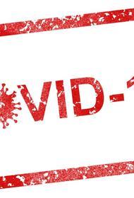 В Ираке число случаев коронавирусной инфекции превысило 67 тысяч