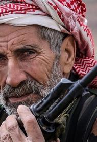 Курдский вопрос и ближневосточная политика России