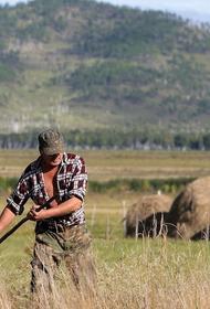 В Госдуме предлагают развивать сельское хозяйство в регионах со сложным климатом