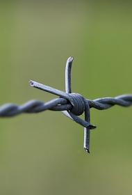 В Госпогранслужбе Украины рассказали о строительстве «стены» на границе с Россией