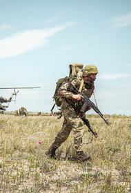 Sina назвало главную помеху для военного нападения Украины на РФ из-за Крыма