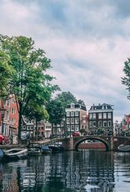 В Амстердаме вручают экологические подарки за рождение малыша