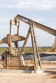 Эксперт оценил возможный рост цен на нефть к 2025 году