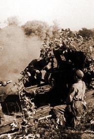 В этот день в 1942 году Совинформбюро сообщало