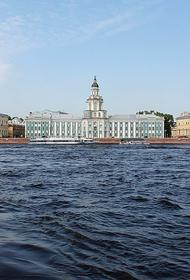 В Петербурге в реультате шторма пострадали два человека
