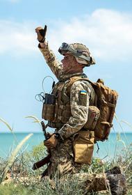 В ДНР раскрыли боевые потери ВСУ за неделю в результате контратак ополченцев