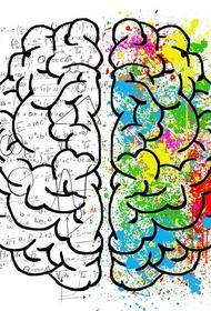 Какие продукты тормозят работу мозга