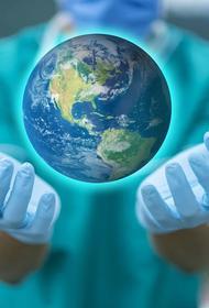 В Бразилии число скончавшихся от коронавируса пациентов превысило 72 тысячи человек