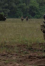 Стали известны новые потери ВСУ в Донбассе в результате ответной атаки сил ДНР