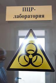 Киргизия будет бороться с пандемией коронавируса с помощью российских тест-систем