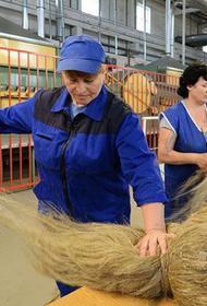 Россия снова переходит на экспорт льна