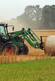 В Тульской области тракторист переехал находившуюся в поле женщину