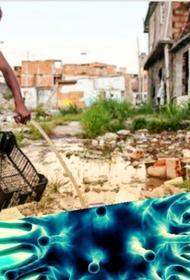 Южная Америка : нищета и мракобесие «помогают» распространению коронавируса 