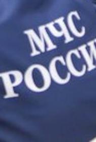 Мужчина утонул в реке Смоленка в Санкт-Петербурге