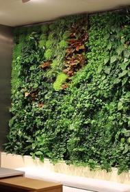 Депутат МГД Игорь Бускин рассказал о новом тренде городского озеленения в столице