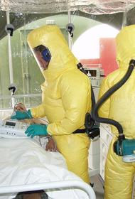 В ВОЗ обеспокоены очередной вспышкой Эболы в Африке