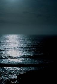 Участники экологического заплыва рассказали о состоянии воды в заливе Петра Великого