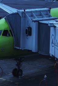 В Домодедово позвонил неизвестный и сообщил о «минировании» аэропорта
