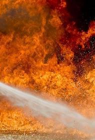 В подмосковных Мытищах вспыхнул пожар на складе с картоном, пламя распространилось на 7,5 тыс. кв. м.