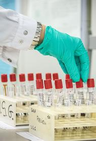Число случаев заражения COVID-19 в мире превысило 14 миллионов