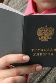 Мишустин подписал постановление об использовании электронных трудовых книжек