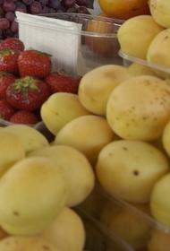 Власти Москвы обсудили с послом Армении ситуацию c армянскими абрикосами на рынке