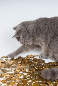 Журналист из Болгарии считает, что у россиян есть привычка замораживать монеты