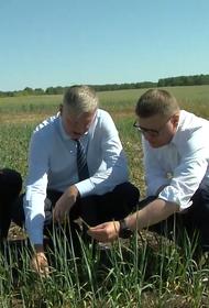 В Челябинской области готовятся объявить режим ЧС из-за засухи