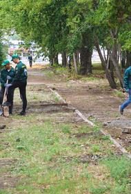 Каким будет «Сад камней» в Челябинске?