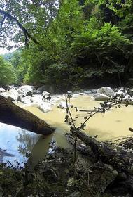 Турист сорвался в каньон реки Большая Хоста в Сочи