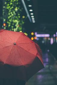 Синоптики рассказали, в каких регионах страны неделя окажется особенно дождливой