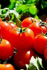 Почему летом вдруг может вырасти цена на помидоры, рассказал эксперт