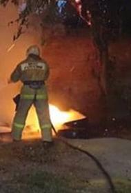 В России потушили около 100 природных пожаров за сутки