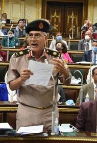 Депутат парламента Египта: «Возможно экономику страны придется перевести на военные рельсы»
