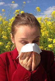 Врач объяснил рост спроса на препараты против аллергии