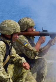 Военный ВСУ выложил видео ракетного удара по гранатометному расчету ДНР в Приазовье
