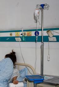 Карантин введен на западе Монголии после случая бубонной чумы