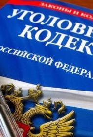В России могут ввести в УК РФ новую статью за налоговое мошенничество