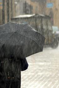 МЧС предупредило о сильном дожде, грозе и граде в Московском регионе