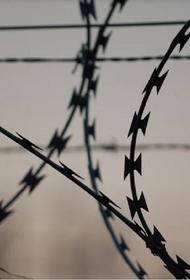 Адвокат заявил, что «колл-центры» в российских тюрьмах не могут появляться без покровительства сотрудников ФСИН