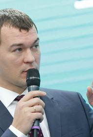 Дегтярев  сообщил о провокаторах из Грузии на акциях в Хабаровске