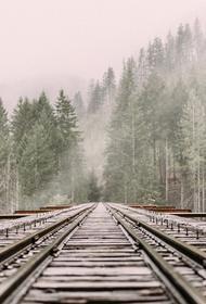 В Подмосковье число погибших на железной дороге снизилось на четверть за полгода