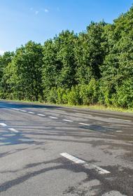 Смертельное ДТП с маршруткой и грузовиком произошло на трассе в Крыму
