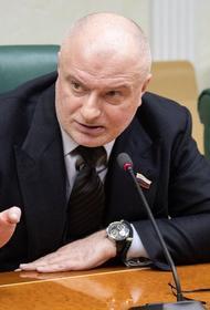 Клишас заявил, что работа с обращениями граждан по Конституции будет продолжена