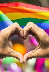 Поляки за неприятие идеологии ЛГБТ лишились денег