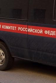 СК: одной из версий гибели семьи на турбазе на Алтае является отравление