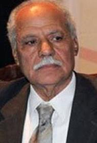 Египетский политик Абу Аль-Уля: США в Сирии совершают преступление против всего человечества
