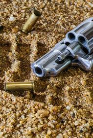 В Петербурге задержан мужчина, который стрелял из автомата на набережной